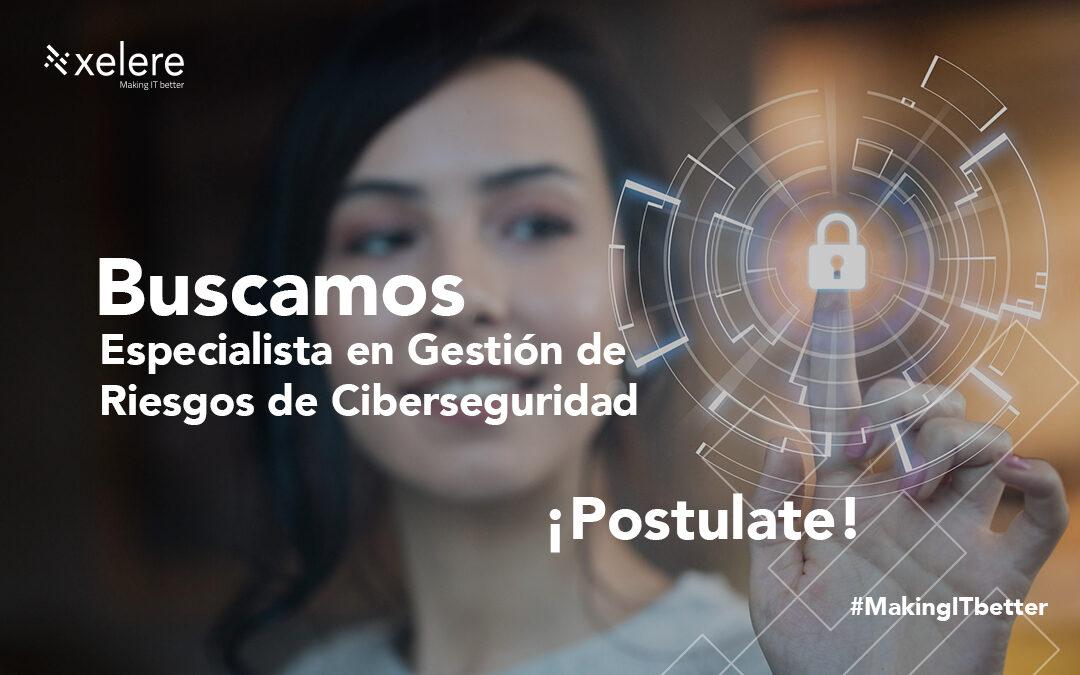 Especialista en Gestión de Riesgos de Ciberseguridad