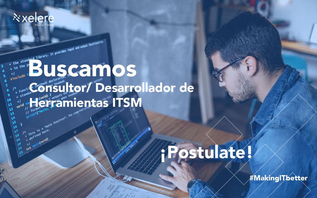 Consultor/ Desarrollador de Herramientas ITSM